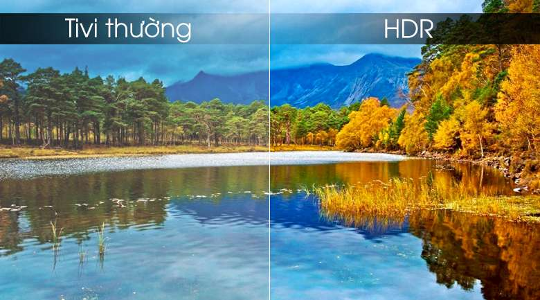 Android Tivi TCL 4K 65 inch L65P8-UF - HDR