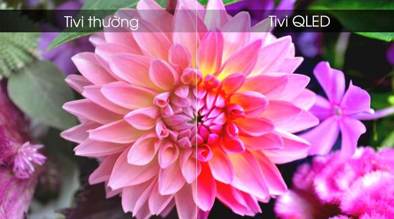 Smart Tivi QLED Samsung 4k 55 inch QA55Q75R - Màn hình chấm lượng tử QLED