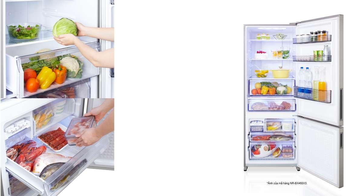 Phong cách tủ lạnh mới với ngăn đông dưới